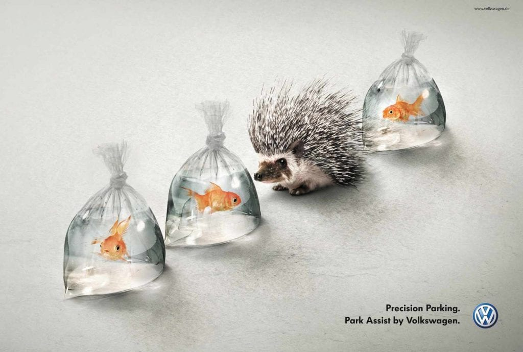 hedgehog and fish volkswagen park assist