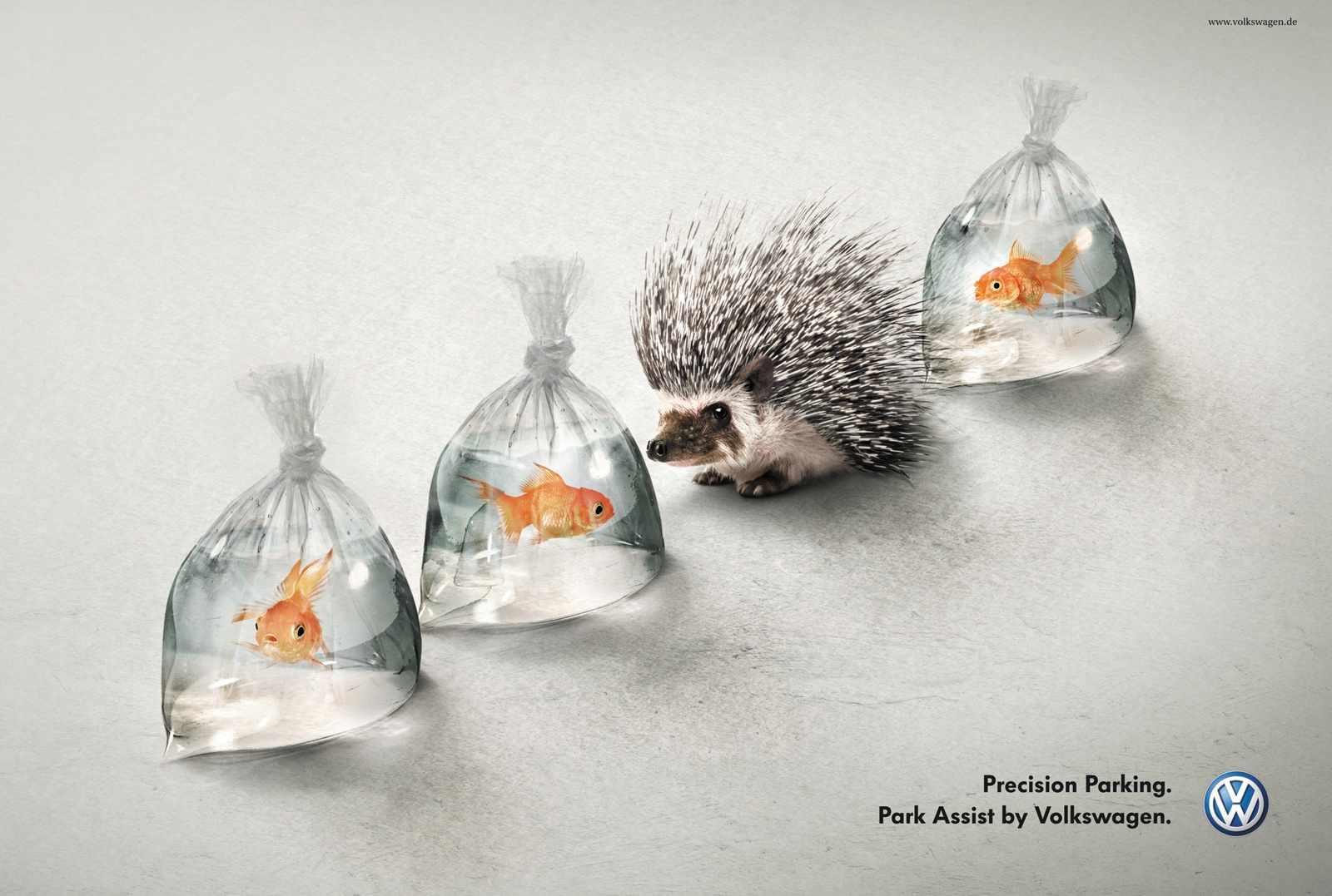 hedgehog and fish volkswagen park assist